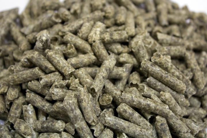 sugar-beet-pulp-pellets